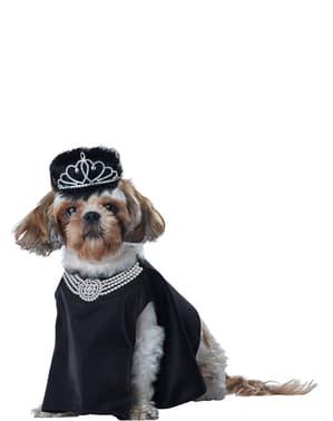 Hollywood diva kostuum voor honden