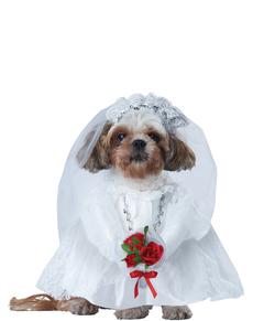 Disfraz de novia elegante para perro
