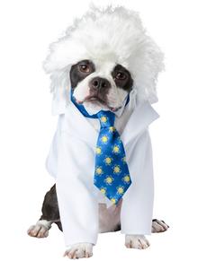Disfraz de Alperro Einstein para perro