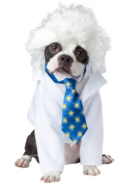 Albert Einstein Kostüm für Hunde