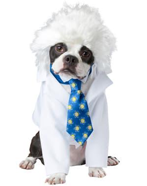Einstein kostuum voor honden