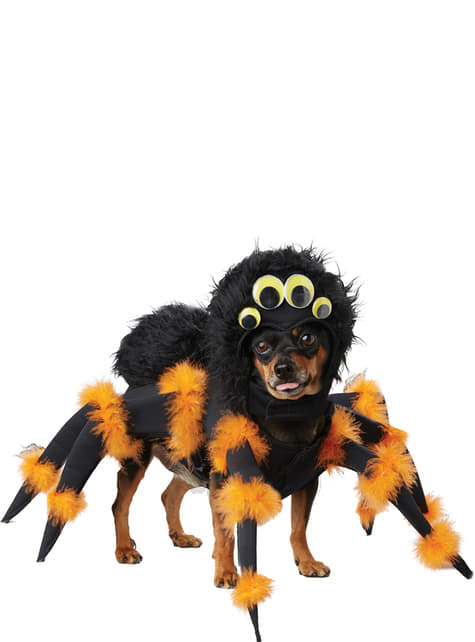 Disfraz de araña aterradora para perro - perro