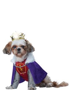 Disfraz de rey de los sabuesos para perro