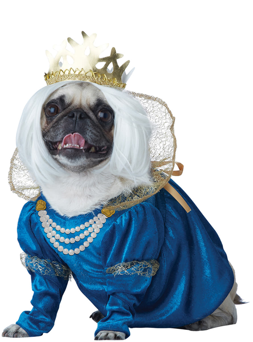 D guisement reine m di vale chien funidelia - Deguisement halloween chien ...