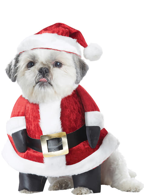 Dog's Father Christmas Costume