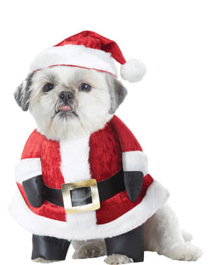 Dog's Father Christmas Costume