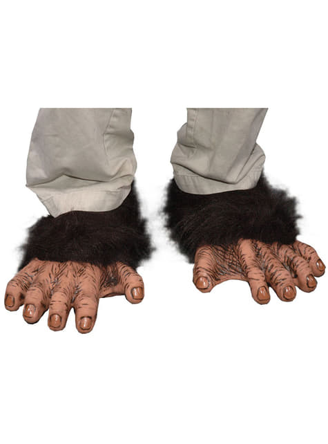 Χιμπατζής πόδια του ενήλικα