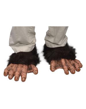 Chimpansee voeten voor volwassenen