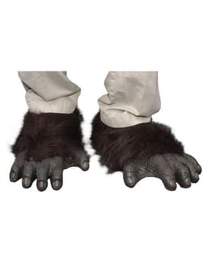 Feet גורילה של מבוגר