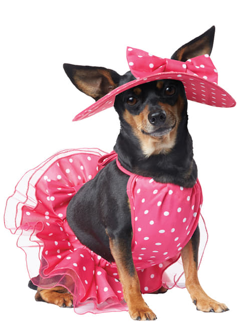 Dog's Glamour Diva Costume