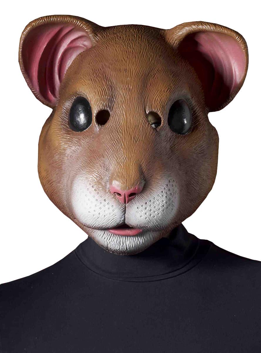 Hamster adult