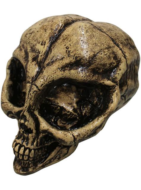 Figura decorativa de esqueleto alien