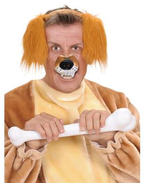 Суровият кучешки нос на възрастен