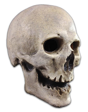Adult's Skeleton of the Past Mask