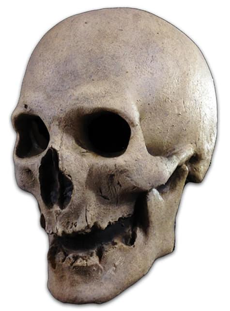 Ο Σκελετός του ενήλικα της προηγούμενης μάσκας