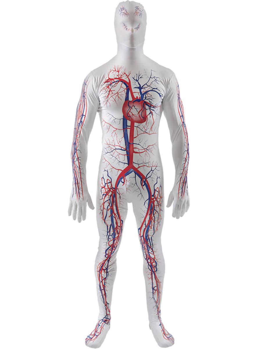 Blutkreislauf Kostüm wie zweite Haut Kostüm für Erwachsene | Funidelia