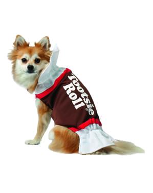 Fato de doce de chocolate para cão