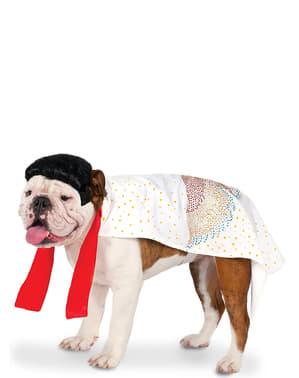 Fato de Elvis topete para cão