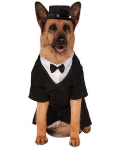 Disfraz de perro con esmoquin talla grande