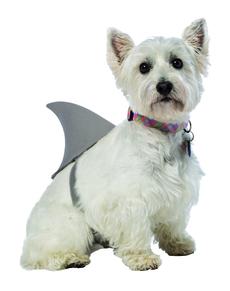 Disfraz de aleta de tiburón para perro