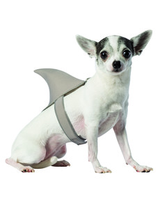 Dogu0027s Shark Costume Dogu0027s Shark Costume  sc 1 st  Funidelia & Wowwwwww! Dog Costumes for those Dog lovers!! online | Funidelia