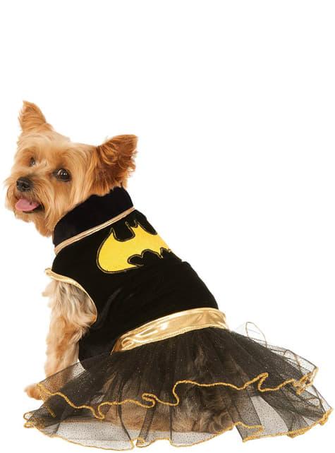 Dog's Batgirl Costume