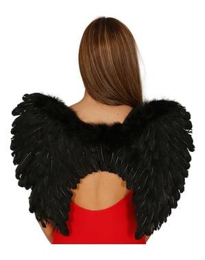 Zwarte vleugels met veren