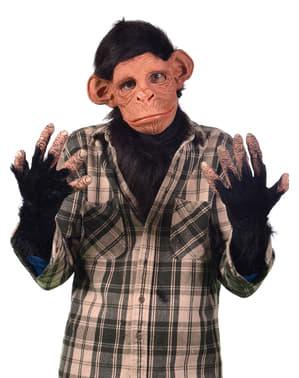 Kit de macaco triste para adulto