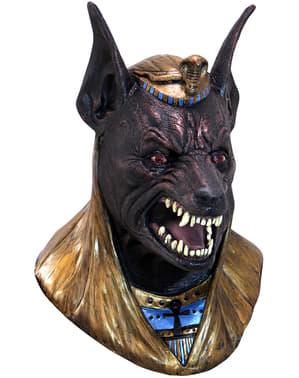 Máscara de Dios Anubis de látex para adulto