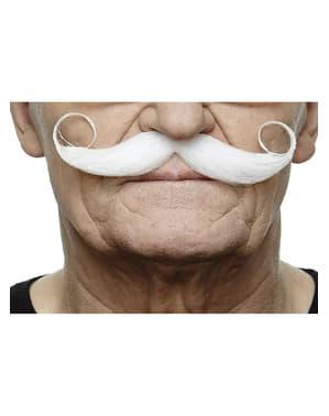 Moustache française élégante grise homme