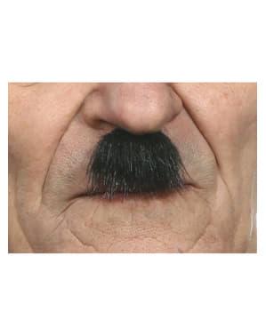 Moustache dictateur allemand homme