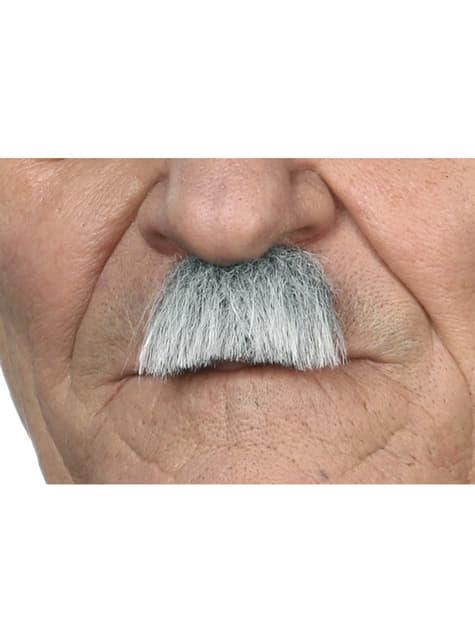 40er Jahre grauhaariger Schnurrbart für Herren