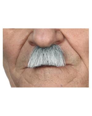 Moustache grise années 40 homme