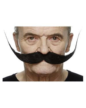 Moustache recoiffée noire homme