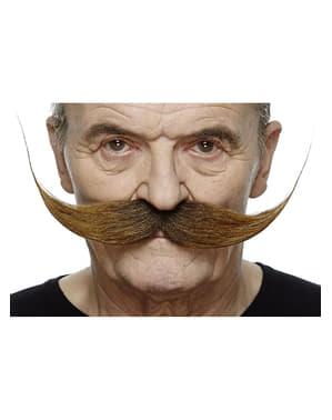 Moustache recoiffée châtain homme