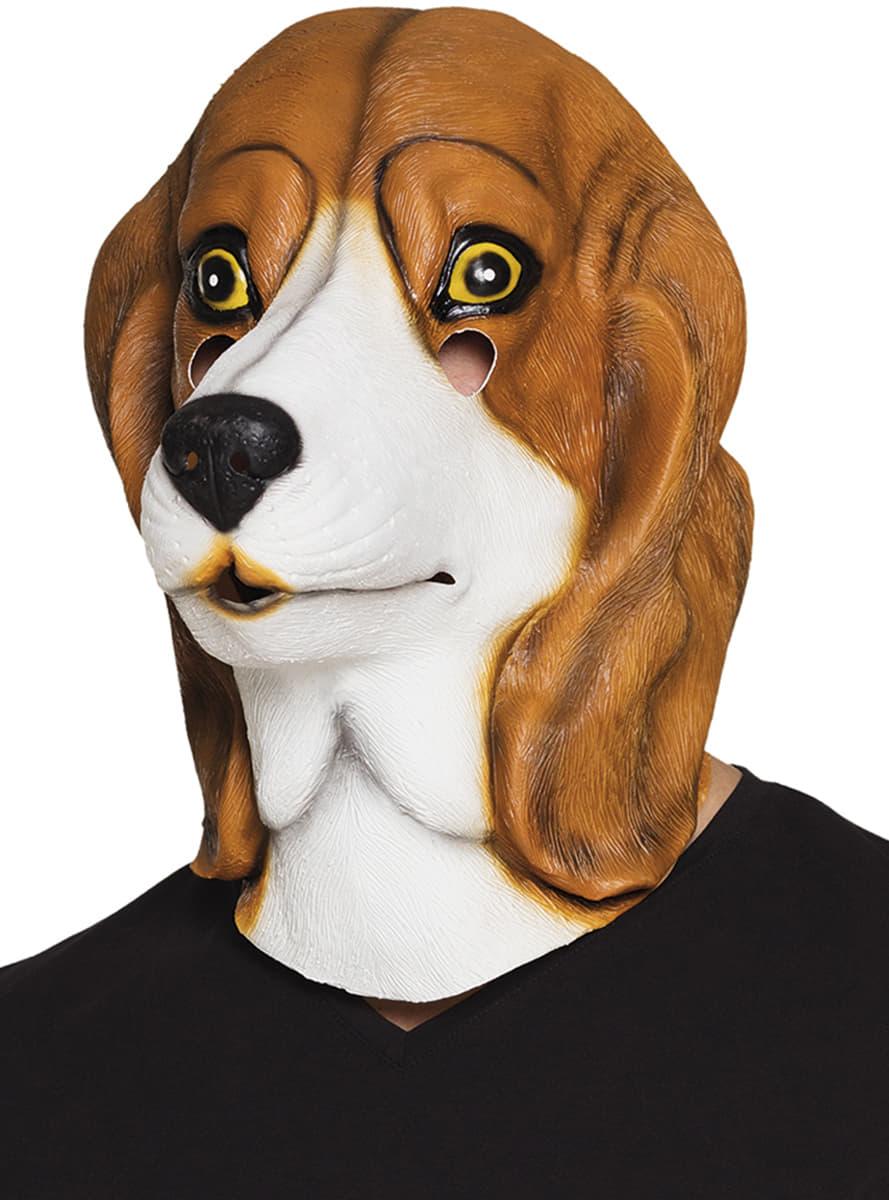 Masque beagle adulte livraison 24h funidelia - Beagle adulte ...