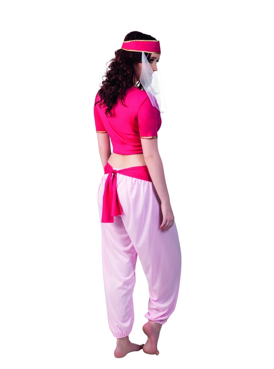 Arabian Nights dancer costume for women | Funidelia