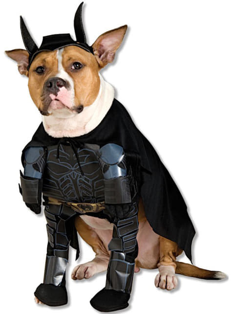 Batman TDK kostuum voor honden
