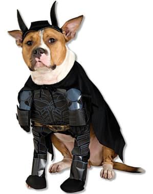 Déguisement de Batman The Dark Knight Risespour chien