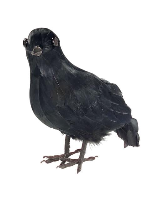 Ponurá vrana