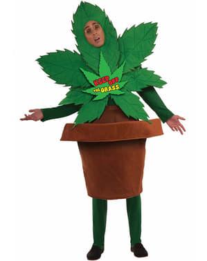 Costum de iarbă bună