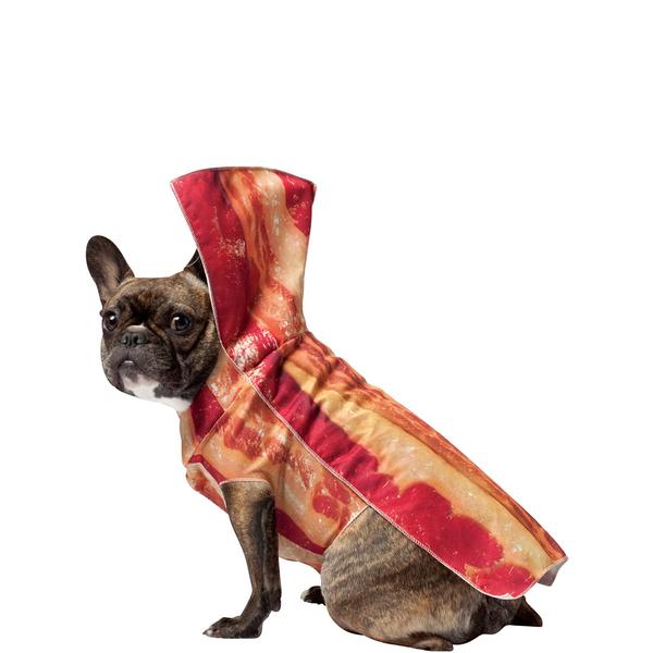 Disfraces de comidas y bebidas para perros
