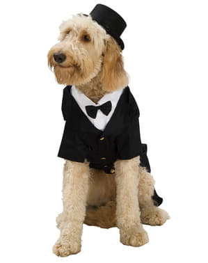 Costum de câine cu smoking