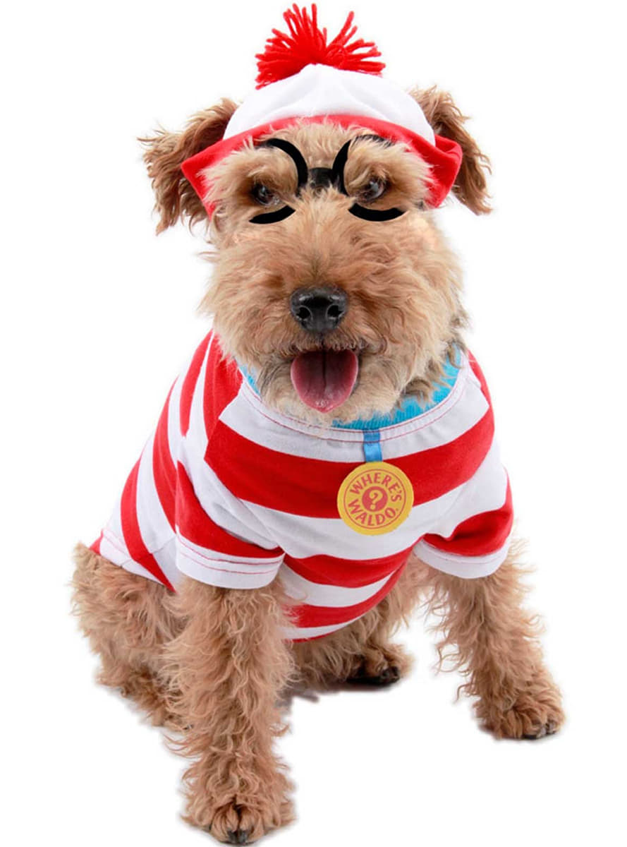 Find Holger Hund kostume til hunde. Express levering   Funidelia