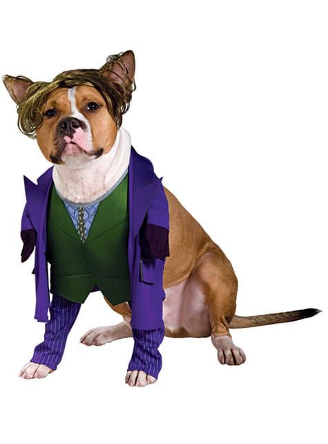 Joker van Batman TDK kostuum voor honden
