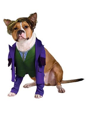 Disfraz de Joker de Batman TDK para perro