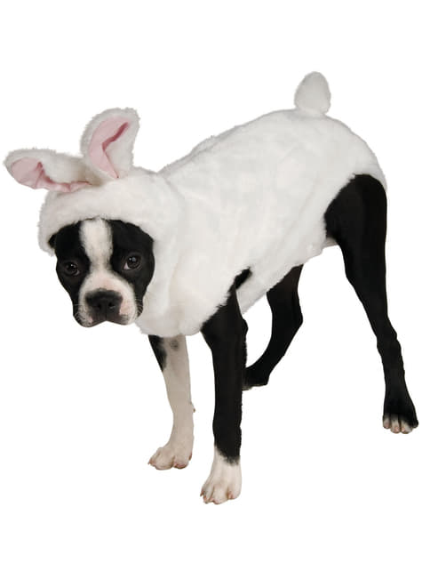 Disfraz de conejo para perro