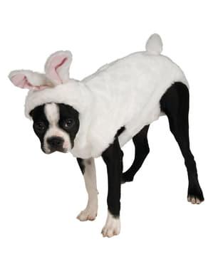 Konijn kostuum voor honden