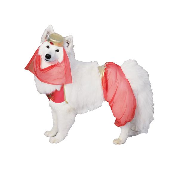 Disfraces de cuentos y princesas para perros