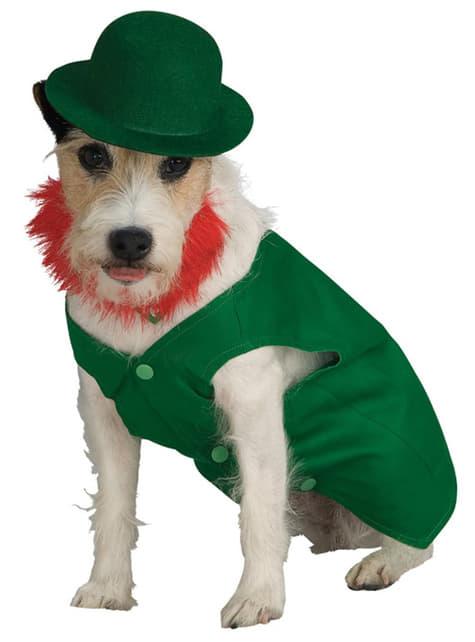 Kabouter kostuum voor honden